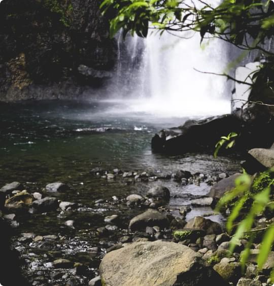 cascade à Basse-Terre