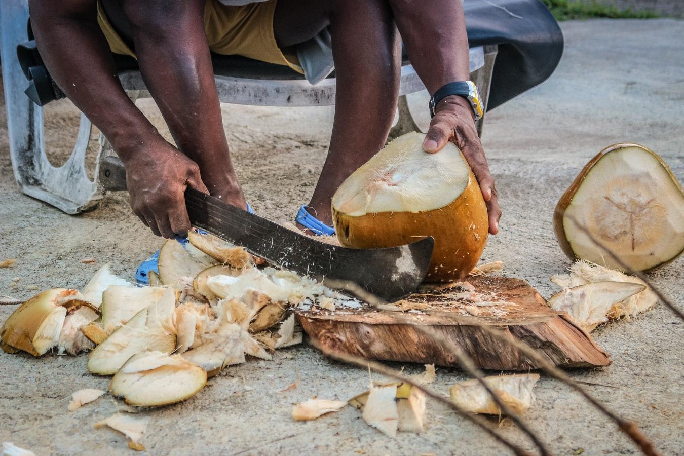 guadeloupéen qui découpe une noix de coco
